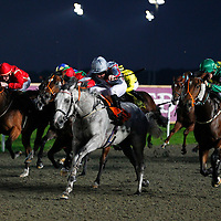 Fiftyshadesoffreed and Pat Cosgrave winning the 7.00 race