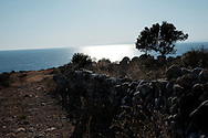 Trachila, Péloponnèse, Grèce.