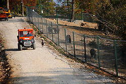 ROMANIA ZARNESTI 25OCT12 - A truck delivers food for the bears along a perimeter fence at the Hauser enclosure at the Zarnesti Bear Sanctuary in Romania, funded by WSPA.......With over 160 acres (70 hectares) spread over a wooded hillside, it is Romania's first bear sanctuary and today houses 67 bears rescued from ramshackle zoos and cages at roadside restaurants.......jre/Photo by Jiri Rezac / WSPA......© Jiri Rezac 2012