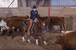 April 29 2017 - Minshall Farm Cutting 1, held at Minshall Farms, Hillsburgh Ontario. The event was put on by the Ontario Cutting Horse Association. Riding in the Non-Pro Class is Katherine Van Boekel on Love That Dog owned by the rider.
