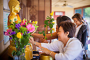 "11 MARCH 2012 - CHANDLER, AZ:  Women rub gold leaf on a Buddha statue before Makha Bucha services at Wat Pa in Chandler, AZ, Sunday. Magha Puja (also spelled Makha Bucha) Day marks the day 2,500 years ago that 1,250 Sangha came spontaneously to see the Buddha who preached to them on the full moon. All of them were ""Arhantas"" or Enlightened Ones who had been personally ordained by the Buddha. The Buddha gave them the principles of Buddhism, called ""The Ovadhapatimokha."" Those principles are: to cease from all evil, to do what is good, and to cleanse one's mind. It is one of the most important holy days in the Theravada Buddhist tradition. At the temple, people participate in the ""Tum Boon"" (making merit by listening to the monk's preaching and giving a donation to the temple), the ""Rub Sil"" (keeping of the Five Precepts including the abstinence from alcohol and other immoral acts) and the ""Tuk Bard"" (offering food to the monks in their alms bowls). It is a day for veneration of the Buddha and his teachings. It's a legal holiday in Thailand, Laos, Cambodia and Myanmar (Burma).        PHOTO BY JACK KURTZ"
