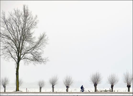 Nederland, Buurmalsen, 16-1-2013Winterlanschap op het platteland met sneeuw, mist en grijze lucht. Een jonge fietser, scholier, fietst langs wilgenbomen van school naar huis.Foto: Flip Franssen/Hollandse Hoogte