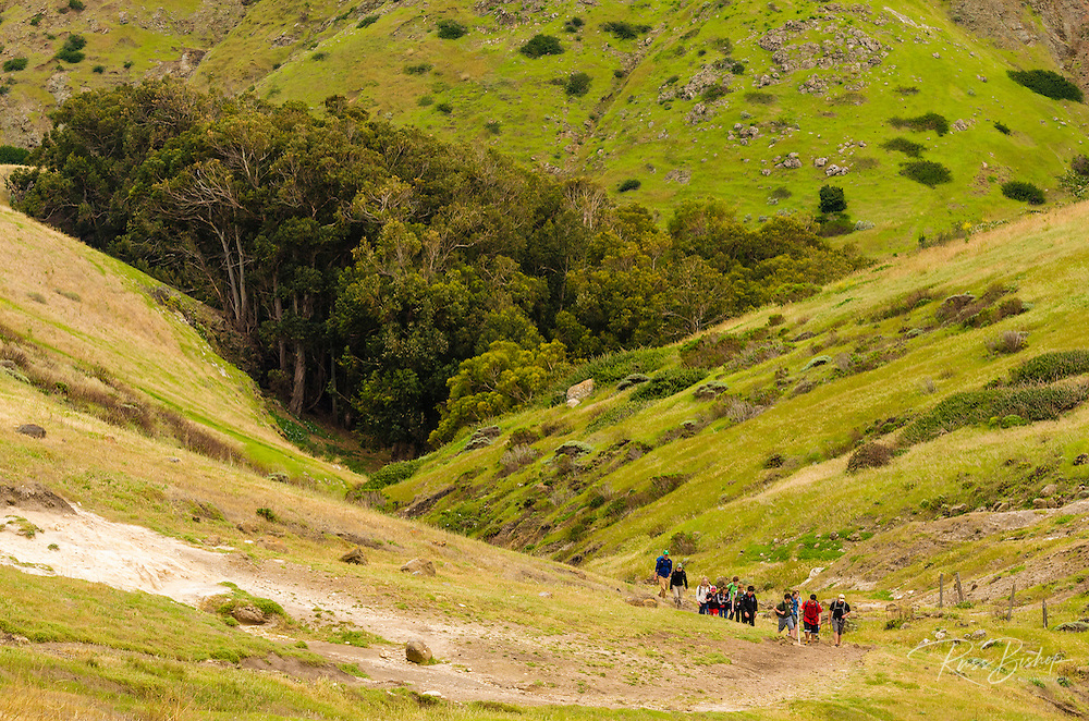 Group of hikers on the Cavern Point Trail above Scorpion Canyon, Santa Cruz Island, Channel Islands National Park, California USA