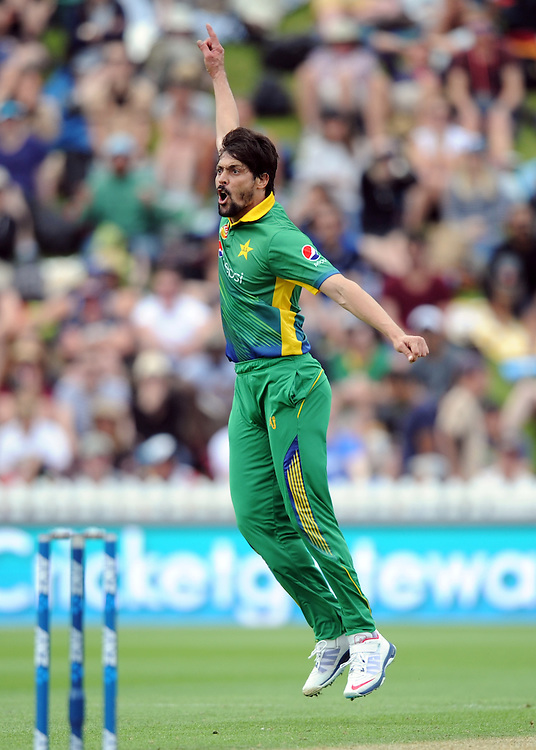 Pakistan's Anwar Ali celebrates after bowling out New Zealand's Grant Elliott fpr 0 in the 1st ODI International Cricket match at Basin Reserve, Wellington, New Zealand, Monday, January 25, 2016. Credit:SNPA / Ross Setford