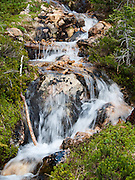 Water streams on the Pacific Crest Trail between Rainy Pass (Highway 20) and Cutthroat Pass, Okanagon National Forest, Washington, USA.