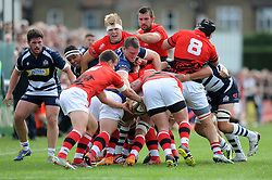 Bristol Rugby Prop Jack O'Connell attempts to grab the ball - Mandatory byline: Dougie Allward/JMP - 07966 386802 - 13/09/2015 - RUGBY UNION - Old Deer Park - Richmond, London, England - London Welsh v Bristol Rugby - Greene King IPA Championship.