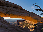 Mesa Arch bounces golden light at sunrise in Canyonlands National Park, Utah, USA.
