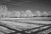Horse pasture with power lines and shadows in rural Kentucky.  Infrared (IR) photograph by fine art photographer Michael Kloth. Black and white infrared photographs