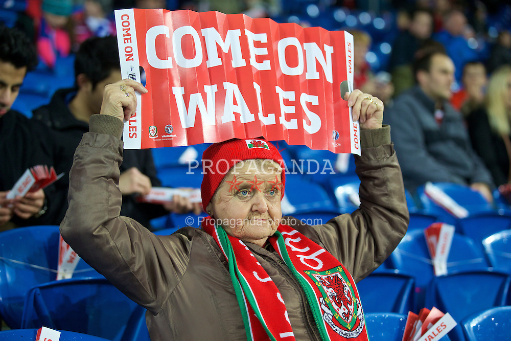 CARDIFF, WALES - Friday, November 13, 2015: A Wales supporter before the International Friendly match against the Netherlands at the Cardiff City Stadium. (Pic by David Rawcliffe/Propaganda)