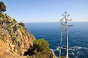 The cliff and cost, Tossa De Mar, Costa Brava, Spain