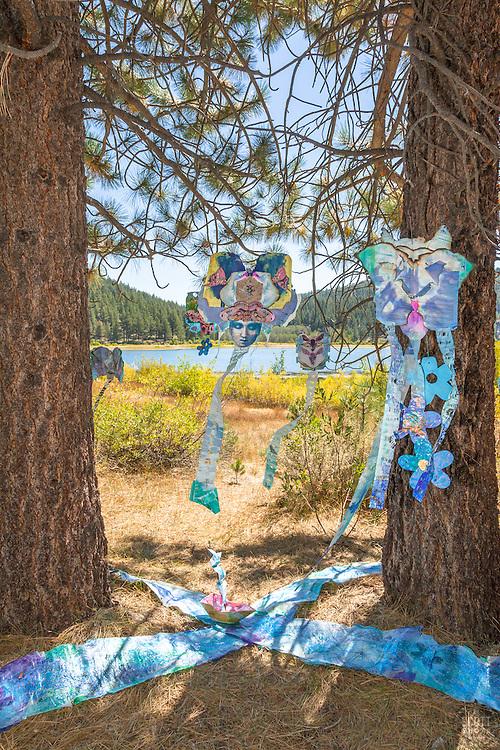 Trails and Vistas 2016
