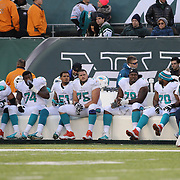 Miami Dolphins linemen on the team bench during the New York Jets Vs Miami Dolphins  NFL American Football game at MetLife Stadium, East Rutherford, NJ, USA. 1st December 2013. Photo Tim Clayton