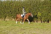 Class 12 - Novice Ridden Horse or Pony