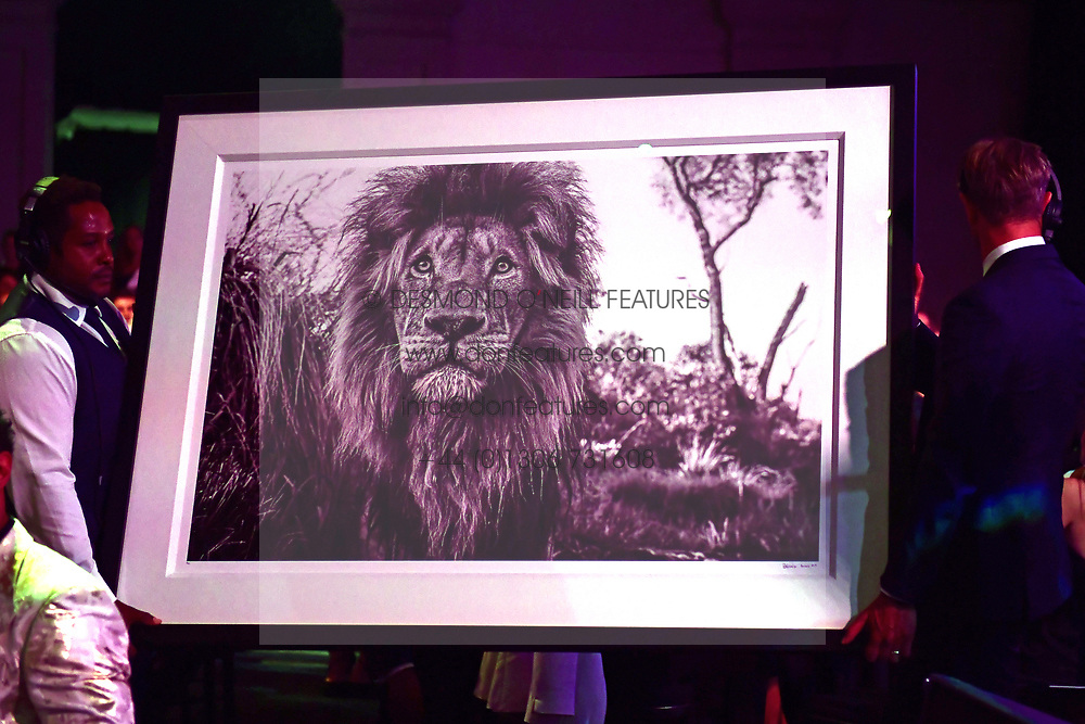 David Yarrow photo auctioned at the Boodles Boxing Ball, in association with Argentex and YouTube in Support of Hope and Homes for Children at Old Billingsgate London, United Kingdom - 7 Jun 2019 Photo Dominic O'Neil