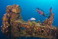 WWII Shipwreck in Guam's Apra Harbor, the Japanese freighter Kitsugawa Maru with bowgun and ammunition boxes still intact