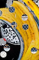 New York, New York City. Fence graphic against banana skin background.