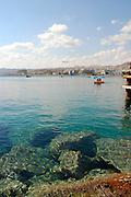 Israel, Eilat beach coral reef