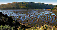 California, Point Reyes, estuary, Natural maze, low tide.