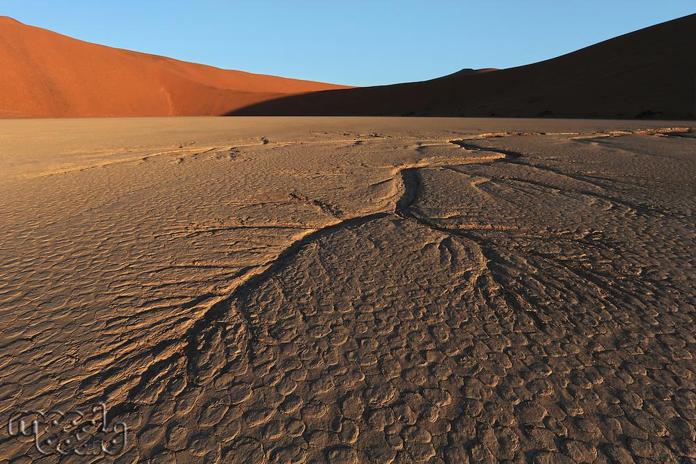 Dead Vlei  Namib Desert  Namibia