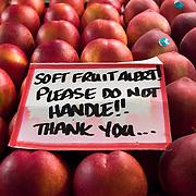 "Fresh produce and warning signs, ""Soft Fruit Alert! Please Do Not Handle"", Pike Place Market, Seattle, Washington"