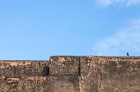 A bird sits atop the walls of Fatehpur Sikri, Uttar Pradesh, India.