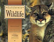 Falcon Press, Globe Pequot Press, California Wildlife