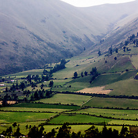 The Andes mountains in Ecuador were a surprise with the lush vegetation that existed up to 14,000 feet.