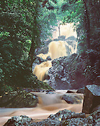 6212-1029 ~ Copyright: George H. H. Huey ~ Argyle Waterfall in flood stage. 175 foot high falls, near the villiage of Roxborough. Tropical rainforest. Island of Tobago. Trinidad and Tobago.