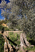 Agrigento, Valle dei Templi. Canalizzazioni arabe ripristinate per l'irrigazione del Giardino della Kolymbetra. Proprietà FAI.  ©2012 Vince Cammarata | FOS