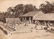People working. Plumbago<br /> circa 1860