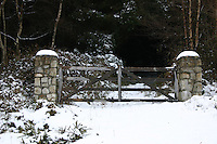 Gates to woods, Wicklow, ireland