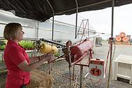 Barb Bauman provar &auml;ppelkanonen p&aring; Bauman Farms. Gervais, Oregon, USA<br /> Foto: Christina Sj&ouml;gren