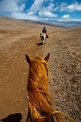 Horseback riding on a ranch, The Big Island, Hawaii, United States of America