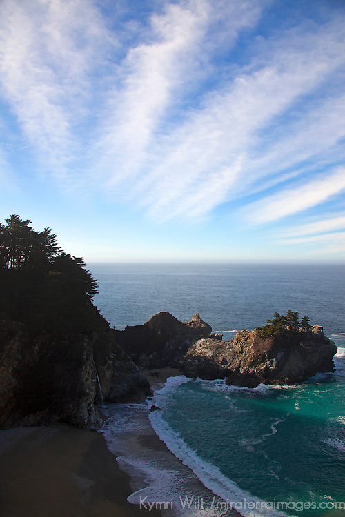 USA, California, Big Sur. Julia Pfeiffer Burns State Park in Big Sur on Pacific Coast Highway 1.