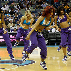 March 30, 2011; New Orleans, LA, USA; New Orleans Hornets Honeybees perform during the third quarter of a game against the Portland Trail Blazers at the New Orleans Arena. The Hornets defeated the Trail Blazers 95-91.   Mandatory Credit: Derick E. Hingle