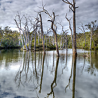 Margaret River Australia