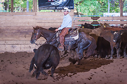 September 23, 2017 - Minshall Farm Cutting 5, held at Minshall Farms, Hillsburgh Ontario. The event was put on by the Ontario Cutting Horse Association. Riding in the $5,000 Novice Horse Class is Troy Donaldson on Dual Peps Tom Cat owned by James Cook.