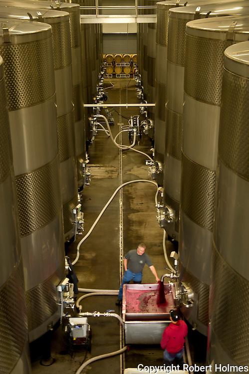 Goose Ridge Vineyards near Richland, Washington