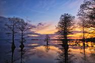 winter sunset at Lake Mattamuskeet, Hyde County, NC
