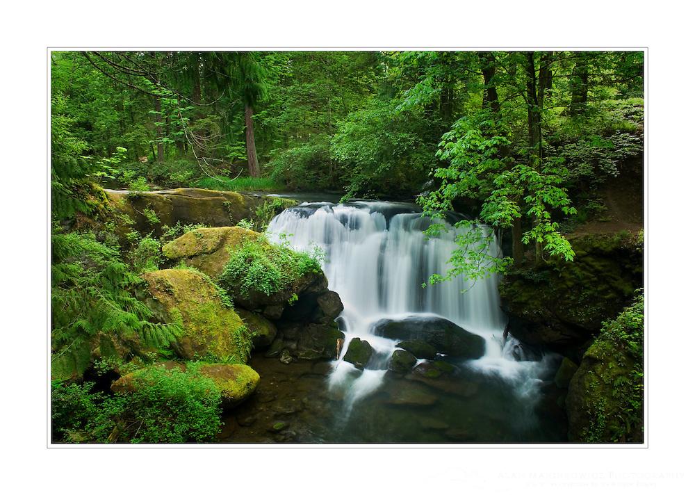 Whatcom Falls, Bellingham Washington