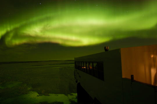 Aurora borealis, also known as Northern Lights dance above Tundra Buggy vehicle. Cape Churchill, Manitoba. Canada.