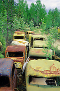 South Canol vehicles rust away in the Yukon.