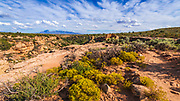 Trail leading to Tower Point Ruins, Hovenweep National Monument, Utah USA