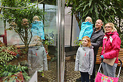 """Mannheim. 02.01.18   <br /> Luisenpark. Feature im Pflanzenschauhaus. Viele Besucher, darunter Familien, nutzen die """"Freien Tage"""" nach Weihnachten und Neujahr für einen Besuch im Luisenpark.<br /> - Familie Bartholomä aus Schifferstadt. <br /> - v.l. Leana, Thorsten, Luisa und Lorena<br /> Bild: Markus Prosswitz 02JAN18 / masterpress (Bild ist honorarpflichtig - No Model Release!) <br /> BILD- ID 00444  """