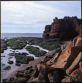 Red Rock, Devon, 2010
