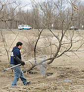 Tom Neely, an animal control officer with the Warwick Valley Humane Society, walks toward an injured hawk, in the tree at right, in Chester on March 28, 2013. The bird could not fly and hopped up the tree from branch to branch. Route 17 is in the background.