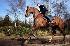 Kooremans Raf 2005
