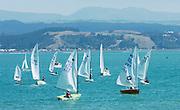 Dinghy sailing. Photo: Alphapix / PHOTOSPORT