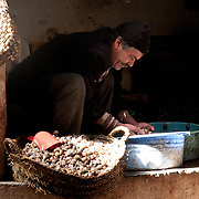 Man preparing snails for sale at the souk in Fes, Morocco