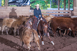 September 24, 2017 - Minshall Farm Cutting 6, held at Minshall Farms, Hillsburgh Ontario. The event was put on by the Ontario Cutting Horse Association. Riding in the Non-Pro Class is Amy Delange on A Spoonful Of Style owned by the rider.